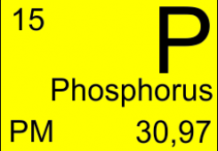 C сохранением поляризации P-SM-5-PM