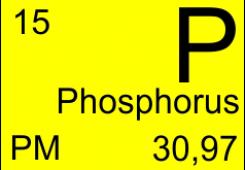 Polarization maintaining phosphorus fiber P-SM-5-PM